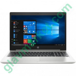 HP ProBook 455 G7 Silver (7JN01AV_V8)